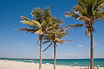 Coconut palms still grace the white sand beaches of Lauderdale-By-the-Sea.