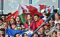 Wales fans in the stadium to watch the game against Australia<br /> <br /> Australia Vs Wales - Men's quarter-final<br /> <br /> Photographer Chris Vaughan/CameraSport<br /> <br /> 20th Commonwealth Games - Day 4 - Sunday 27th July 2014 - Rugby Sevens - Ibrox Stadium - Glasgow - UK<br /> <br /> © CameraSport - 43 Linden Ave. Countesthorpe. Leicester. England. LE8 5PG - Tel: +44 (0) 116 277 4147 - admin@camerasport.com - www.camerasport.com