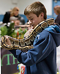 14 year old Jack Foley holds a 10 year old ball python at the Reno Repticon event held on Sunday afternoon, February 10, 2013 at the Reno Livestock Events Center in Reno, Nevada.
