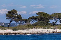 Europe/France/Provence-Alpes-Côte d'Azur/Alpes-Maritimes/Cannes:   îIes de Lérins, île de Sainte Marguerite et en fond les sommets des Alpes enneigés // Europe/France/Provence-Alpes-Côte d'Azur/Alpes-Maritimes/Cannes:   Lerins island of Saint Margaret