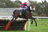 Pindar ridden by Michael Byrne in jumping action during the Pudding Norton Conditional Jockeys Selling Handicap Hurdle