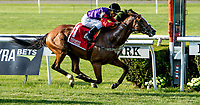 ELMONT, NY - JUNE 08: Call to Mind, #1, ridden by Javier Castellano, owned and bred my Her Majesty Queen Elizabeth II, wins the Belmont Gold Cup Invitational during Friday racing action of the Belmont Stakes Festival at Belmont Park on June 8, 2018 in Elmont, New York. (Photo by Sue Kawczynski/Eclipse Sportswire/Getty Images)
