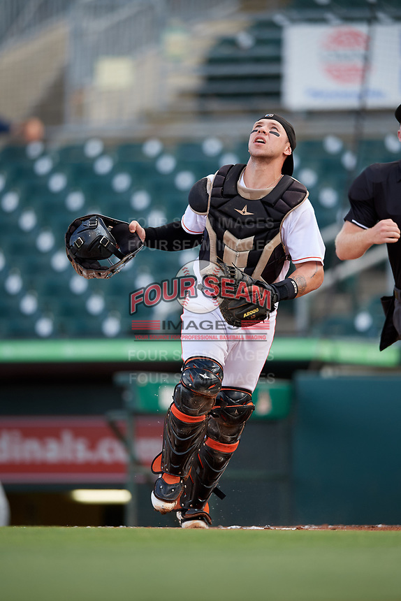 Jupiter Hammerheads catcher B.J. Lopez (15) tracks a pop up during a game against the Palm Beach Cardinals on August 4, 2018 at Roger Dean Chevrolet Stadium in Jupiter, Florida.  Palm Beach defeated Jupiter 7-6.  (Mike Janes/Four Seam Images)