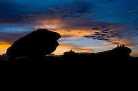 Conceicao do Mato Dentro_MG, Brasil...Parque Natural Municipal do Salao de Pedras em Conceicao do Mato Dentro, Minas Gerais...Municipal Natural Park Salao de Pedras in Conceicao do Mato Dentro, Minas Gerais...Foto: LEO DRUMOND / NITRO
