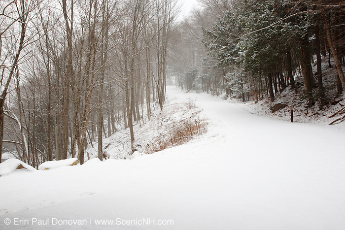 Franconia Notch State Park - Flume Gorge Scenic Area in Lincoln, New Hampshire USA during a snow storm.  Blowing snow can be seen