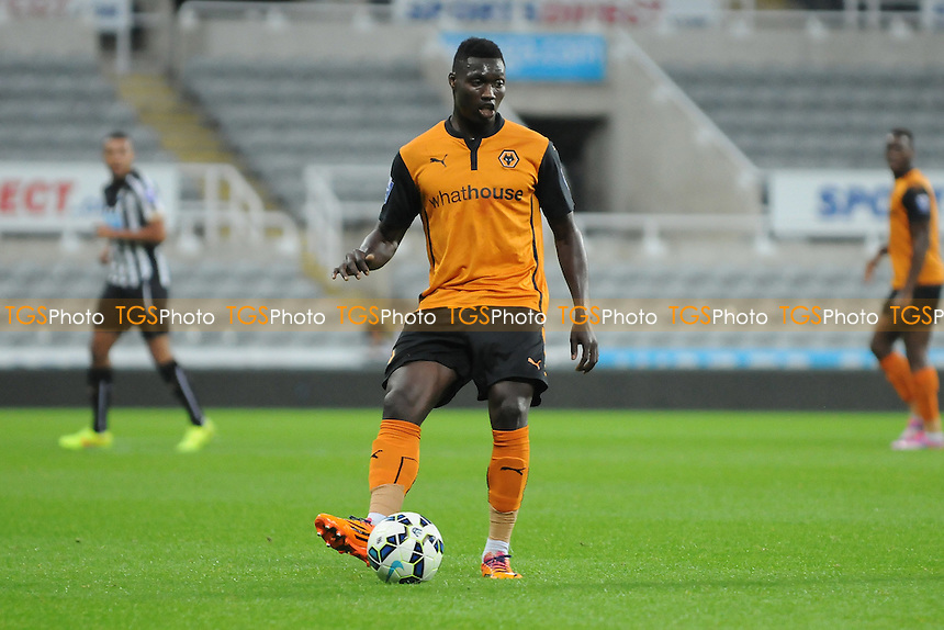 Declan Weeks of Wolves - Newcastle United Under-21 vs Wolverhampton Wanderers Under-21 - Barclays Under-21 Premier League Football at St James' Park, Newcastle upon Tyne - 15/09/14 - MANDATORY CREDIT: Steven White/TGSPHOTO - Self billing applies where appropriate - contact@tgsphoto.co.uk - NO UNPAID USE