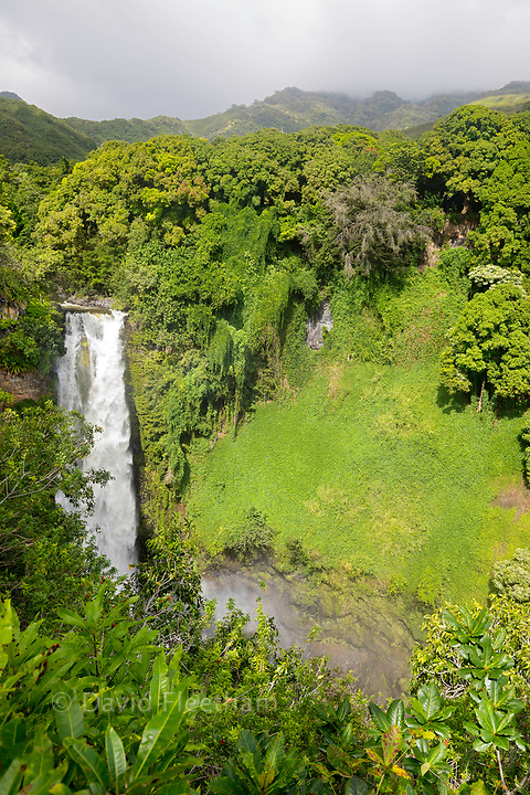 Makahiku Falls is a 200-foot horsetail waterfall and one of the more impressive waterfalls along the Pipiwai Trail in Ohe'o Gulch, Haleakala National Park, Kipahulu, Maui, Hawaii.