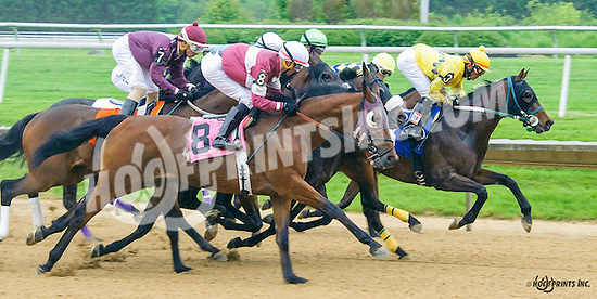 1st time by in the 5th race at Delaware Park on 5/21/16