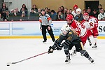 ADRIAN, MI - MARCH 18: Kristin Lewicki (25) of Adrian College chases a loose puck during the Division III Women's Ice Hockey Championship held at Arrington Ice Arena on March 19, 2017 in Adrian, Michigan. Plattsburgh State defeated Adrian 4-3 in overtime to repeat as national champions for the fourth consecutive year. by Tony Ding/NCAA Photos via Getty Images)