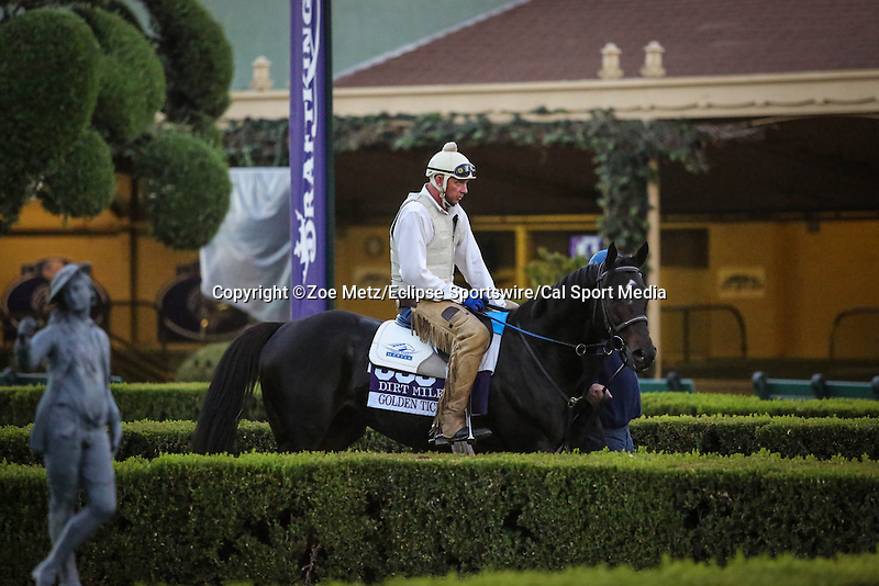 October 28, 2014: Golden Ticket exercises in preparation for the Breeders' Cup Dirt Mile at Santa Anita Park in Arcadia, California on October 28, 2014. Zoe Metz/ESW/CSM