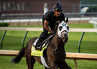 LOUISVILLE, KY - MAY 02: Nobel Indy gallops in preparation for the Kentucky Derby at Churchill Downs on May 2, 2018 in Louisville, Kentucky. (Photo by Alex Evers/Eclipse Sportswire/Getty Images)