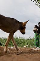 A  refugee dog in Nyori  camp, South Sudan.