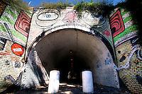 Titolo: Senza Titolo,  Artista Mr Thoms<br /> Artist Mr Thoms<br /> Diego della Posta, in arte Mr Thoms ha dipinto un volto dal naso rosso, grottesco, e occhi sgranati. il buco nero  si trasforma in una bocca spalancata che risucchia tutto quello che c'è intorno. Segnali stradali, piante, ombrelli.<br /> Roma 01-02-2015 Street Art a Roma. In vari quartieri di Roma e' fiorita la Street Art, con splendidi murales che hanno lo scopo di raccontare delle storie della citta', di commemorare dei momenti importanti, o semplicemente di interpretarla.<br /> Street Art in Rome. Very important writers  painted Murales in various districts of Rome to tell stories about the city, to commemorate important moments, to embellish the quarter or simply to portray it.  <br /> Photo Samantha Zucchi Insidefoto
