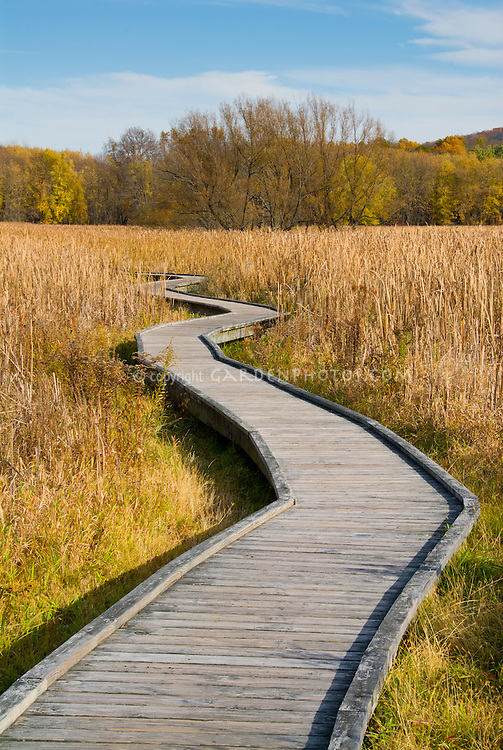 Appalachian Trail, boardwalk, Sussex County, New Jersey in autumn fall, pathway walkway, wooden, inspirational journey