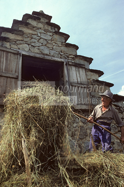 Europe/France/Midi-Pyrénées/09/Ariège/Couserans/Cominac : Fenaison - Engrangement du foin<br /> PHOTO D'ARCHIVES // ARCHIVAL IMAGES<br /> FRANCE 1980