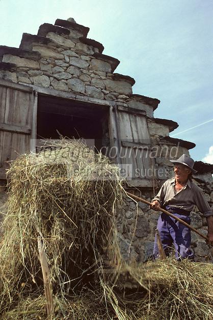 Europe/France/Midi-Pyrénées/09/Ariège/Couserans/Cominac: Fenaison - Engrangement du foin<br /> PHOTO D'ARCHIVES // ARCHIVAL IMAGES<br /> FRANCE 1980
