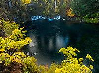 Tamolitch Falls, Blue Pool, McKenzie River National Wild and Scenic River, Willamette National Forest, Oregon