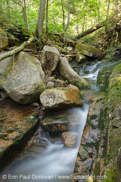 Louisville Brook near Bear Notch Road in Bartlett, New Hampshire USA. This road follows much of the old Bartlett and Albany Railroad which was a logging railroad in operation from 1887-1894.