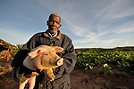 Mafaniso Thegha poses with one of his pigs in Ekwendeni, Malawi. He has raised pigs as part of a animal husbandry project sponsored by the Presbyterian Church.