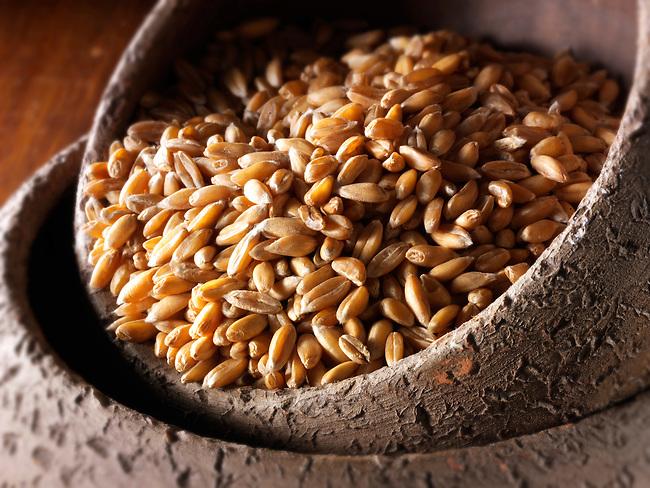 Spelt grains stock photos