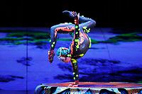 JAN 11 Cirque Du Soleil - TOTEM at Royal Albert Hall