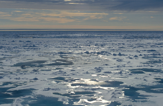 Sunlight catches patches of open water between ice floes in the Arctic Ocean. July.