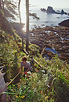 Olympic National Park, Coast Hikers, Shi Shi Beach to Lake Ozette Trail, Point of the Arches, Olympic Peninsula, Washington State, Pacific Northwest, USA, hikers using fixed ropes to climb over headlands and avoid tides and surf.