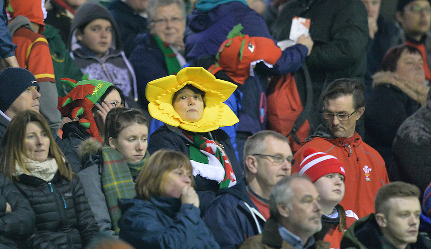 A Welsh fan in the crowd before the game<br /> <br /> Photographer Dave Howarth/CameraSport<br /> <br /> International Rugby Union - RBS Under 20's Six Nations Championships 2016 Round 3 - Wales U20 v Italy U20 - Friday 18th March 2016 - Eirias Park, Colwyn Bay<br /> <br /> &copy; CameraSport - 43 Linden Ave. Countesthorpe. Leicester. England. LE8 5PG - Tel: +44 (0) 116 277 4147 - admin@camerasport.com - www.camerasport.com