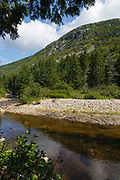 Zealand Notch - Whitewall Mountain with Whitewall Brook in the foreground during the summer months in the White Mountains, New Hampshire USA. This area was part of the Zealand Valley Railroad, which was a logging railroad in operation from 1884-1897.