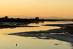 Aigues Mortes- Le saline si trovano nel Delta del Rodano che costituisce il Parco naturale della Camargue. Le saline si trovano in 10.000 ettari di paesaggio incontaminato: stagni salmastri, paludi e canneti, regno incontaminato di uccelli, cavalli, tori e tradizioni gitane.