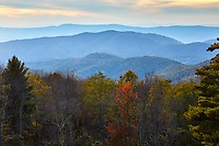 Autumn colors in Shenandoah National Park, Virginia