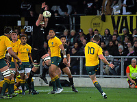 Kieran Read tries to charge Bernard Foley's kick during the Rugby Championship and Bledisloe Cup rugby match between the New Zealand All Blacks and Australia Wallabies at Forsyth Barr Stadium in Dunedin, New Zealand on Saturday, 26 August 2017. Photo: Dave Lintott / lintottphoto.co.nz