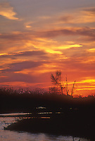 The sun sets over sandbars and shrubs on the Platte River, Fort Kearney State Recreation Area, Buffalo County, Nebraska