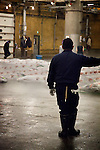 Tokyo, 1st of March 2010 - Tuna at Tsukiji wholesale fish market, biggest fish market in the world. 3:20 a.m, a Japanese middleman looking at the frozen tunas getting prepared for the auctions.