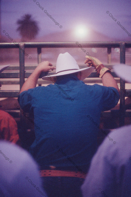 Night Photo from Behind a Rodeo Rider who is Psyching up for his ride.