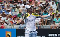Andy Murray..Tennis - Australian Open - Grand Slam -  Melbourne Park  2013 -  Melbourne - Australia - Thursday 17th January  2013. .© AMN Images, 30, Cleveland Street, London, W1T 4JD.Tel - +44 20 7907 6387.mfrey@advantagemedianet.com.www.amnimages.photoshelter.com.www.advantagemedianet.com.www.tennishead.net