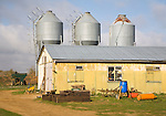 To be captioned after editing Three metal feed storage silos and barn in farmyard, Alderton, Suffolk, England