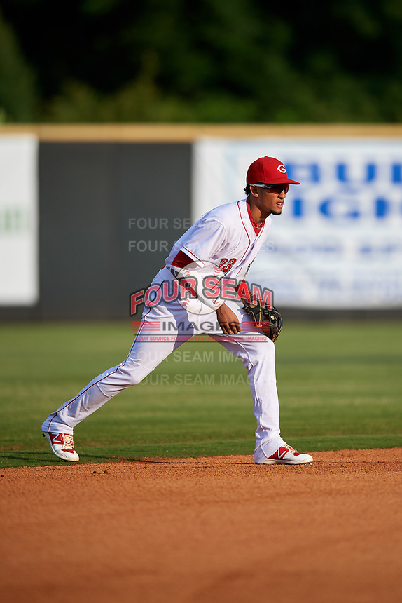 Greeneville Reds shortstop Miguel Hernandez (33) during a game against the Pulaski Yankees on July 27, 2018 at Pioneer Park in Tusculum, Tennessee.  Greeneville defeated Pulaski 3-2.  (Mike Janes/Four Seam Images)