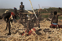Different families have different ways of dealing with Sorghum harvesting... some families just have the women plug away all day long pulling the sorghum grain out of the heads of the plants... other families get everything prepared and then get a bunch of boys to beat the bejesus out of it...