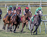 HALLANDALE BEACH, FL - MAR 3:Team of Teams #5 trained by James A. Jerkens with John Velazquez in the irons wins the $100,000 Sand Springs Stakes at Gulfstream Park on March 3, 2018 in Hallandale Beach, Florida. (Photo by Bob Aaron/Eclipse Sportswire/Getty Images)