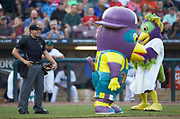 BirdZerk! (right) and Zerk! Jr. have some fun with home plate umpire Steven Hodgins between innings of the Midwest League game between the Bowling Green Hot Rods and the Dayton Dragons at Fifth Third Field on June 9, 2018 in Dayton, Ohio. The Hot Rods defeated the Dragons 1-0.  (Brian Westerholt/Four Seam Images)