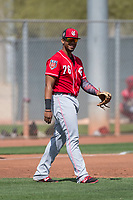 Cincinnati Reds third baseman Leandro Santana (76) during a Minor League Spring Training game against the Los Angeles Angels at the Cincinnati Reds Training Complex on March 15, 2018 in Goodyear, Arizona. (Zachary Lucy/Four Seam Images)