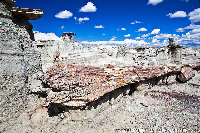 The Bisti De Na Zin Wilderness Area near Farmington, New Mexico, is a wilderness area filled with colorful earthforms and eerie landscapes.