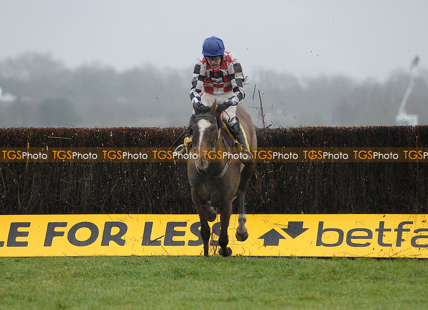The Giant Bolster ridden by Tom Scudamore takes the last in the Betfair Denman Chase Grade 2 Cl1 - Horse Racing at Newbury Racecourse, Newbury, Berkshire - 09/02/2013 - MANDATORY CREDIT: Martin Dalton/TGSPHOTO - Self billing applies where appropriate - 0845 094 6026 - contact@tgsphoto.co.uk - NO UNPAID USE.