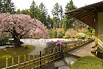 Portland Japanese Garden, Washington Park, Oregon