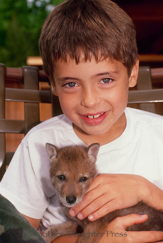 Young boy hold baby coytoe cub brought from conservation society after orphaned, Midwest USA