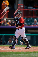 Erie SeaWolves catcher Kade Scivicque (20) during an Eastern League game against the Akron RubberDucks on June 2, 2019 at UPMC Park in Erie, Pennsylvania.  Akron defeated Erie 7-2 in the first game of a doubleheader.  (Mike Janes/Four Seam Images)