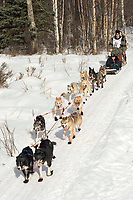 Greg Parvin w/Iditarider on Trail 2005 Iditarod Ceremonial Start near Campbell Airstrip Alaska SC