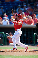Philadelphia Phillies first baseman Austin Listi (76) follows through on a swing during a Grapefruit League Spring Training game against the Baltimore Orioles on February 28, 2019 at Spectrum Field in Clearwater, Florida.  Orioles tied the Phillies 5-5.  (Mike Janes/Four Seam Images)