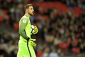 5th October 2017, Wembley Stadium, London, England; FIFA World Cup Qualification, England versus Slovenia; Goalkeeper Jan Oblak of Slovenia